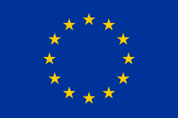 2015: European Parliament supports full implementation of UN CRPD
